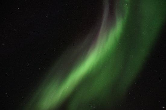 Northern Lights Tour Yukon